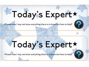 expert labels