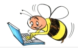 busy-bee-computer